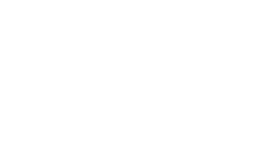 Business Without Barriers